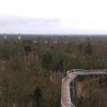 Der Baumkronenpfad und der Blick über die Heilstätten.
