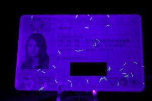 Führerschein mit 12LED-Lampe bestrahlt